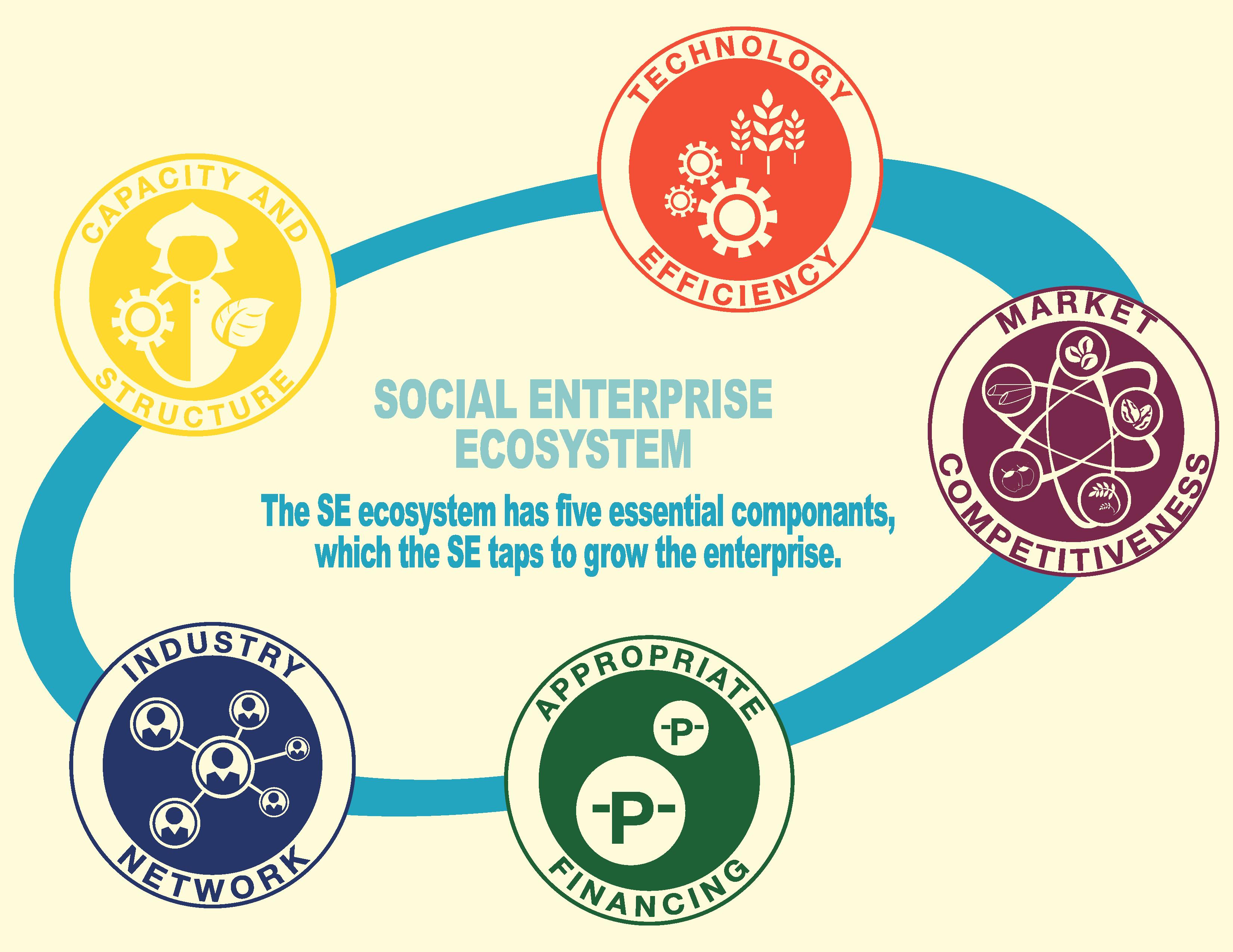 system-ecosystem