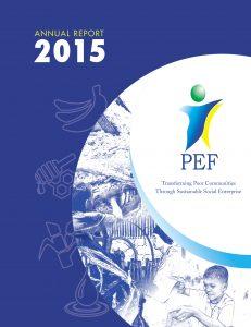 pef-ar2015_web