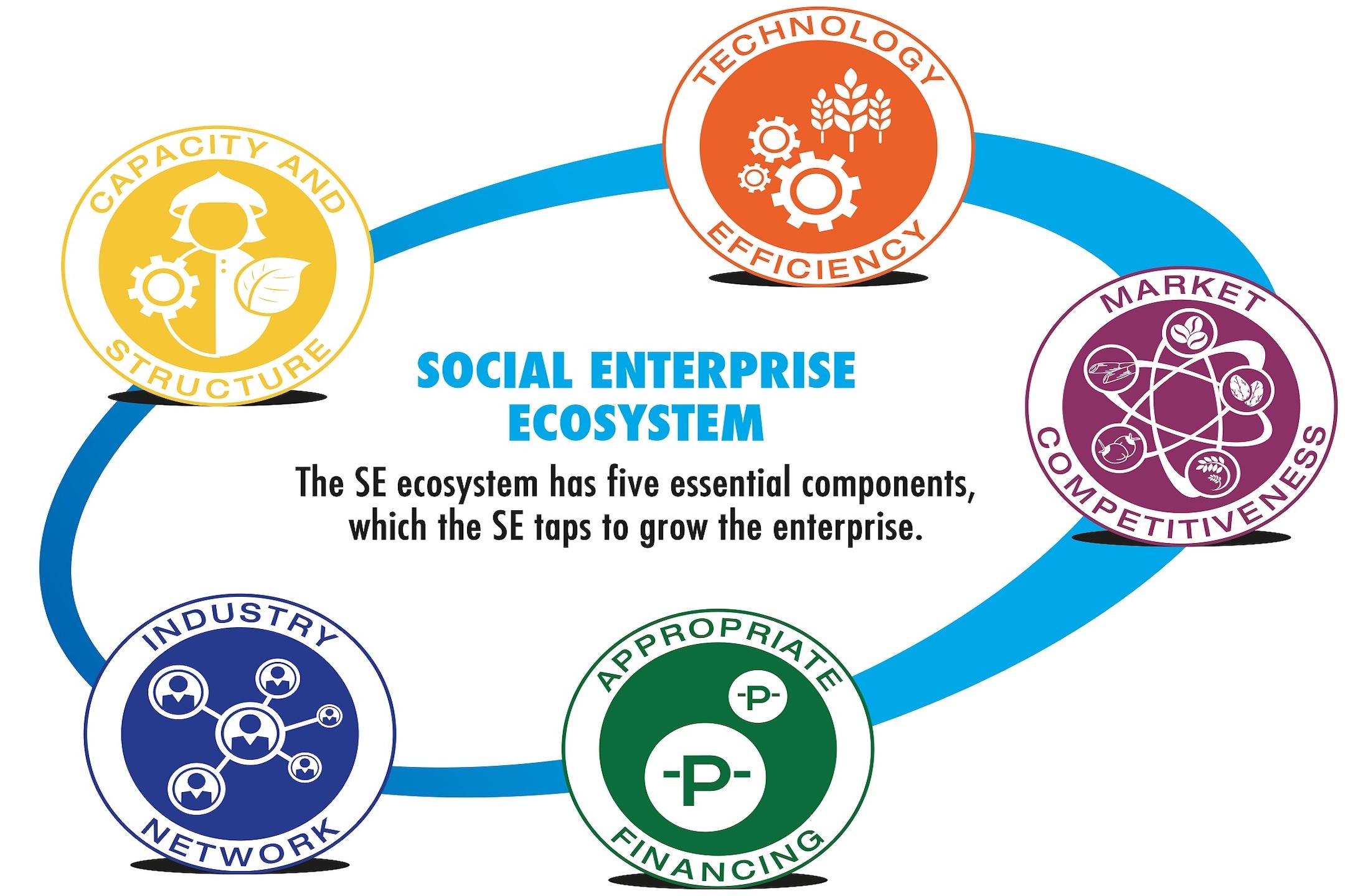 2012: Building  the SE ecosystem