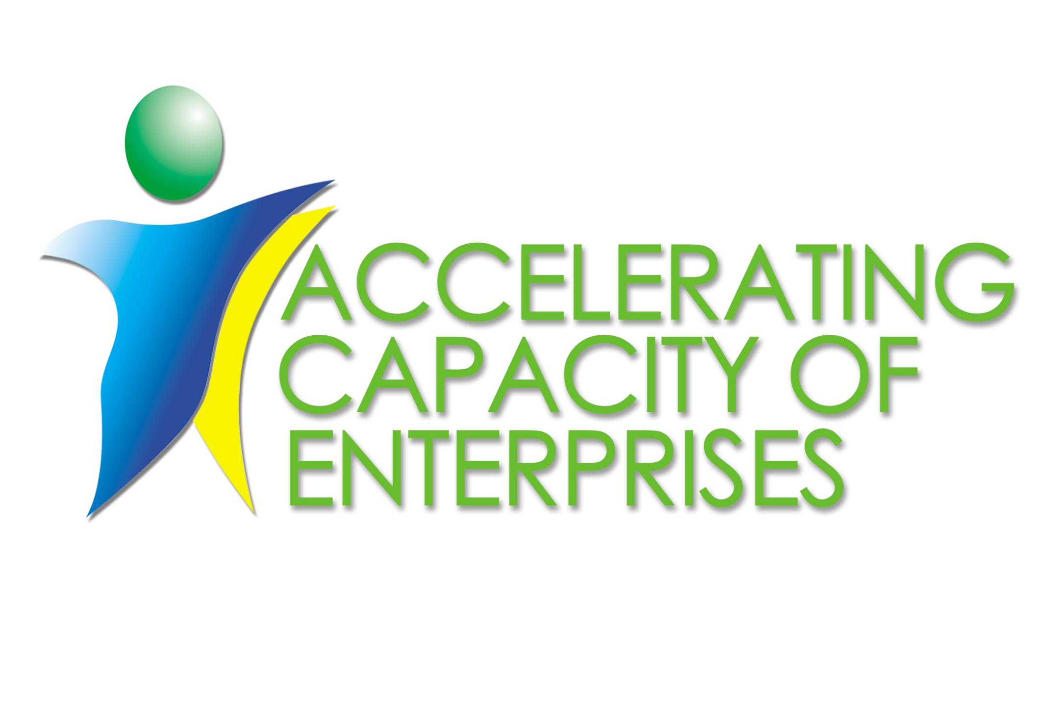 2014: Accelerating capacities of entrepreneurs