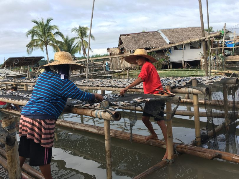 Understanding the aquaculture value chain in Kabasalan